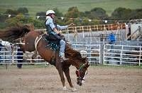 Lake Havasu presents the 2017 Grand Canyon Rodeo and Little Delbert Days on Jan 28th & 29th, combining an old country fair with ropin'/ridin' cowboys.