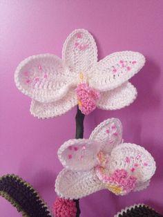 Die 129 Besten Bilder Von Häkeln Lilien Orchideen Irish