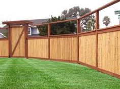 Cheap Fence Ideas   ... they will also hide unsightly wire fencing or an old wooden fence