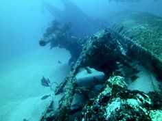 shipwreck diving - German U-boat U701