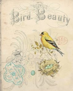 This is one of my favorites on BELLAVINTAGEHOME: Botanical Print Bird Beauty Yellow Bird