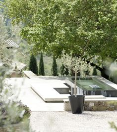 contemporary swimming pool surrounded by pale stone and olive trees