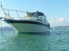 Catawiki Online-Auktionshaus: Sea Ray  270/290
