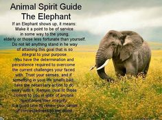 Animal Spirit Guide ~ The Elephant : Service to others, determination, persistence, loyalty, trust. Elephant Spirit Animal, Elephant Quotes, Elephant Facts, Spirit Animal Totem, Animal Spirit Guides, Elephant Love, Animal Totems, Animal Meanings, Animal Symbolism