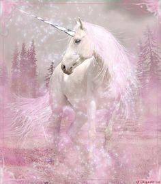 #unicorn #pink