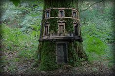 Woodland+mansion+-+Fantasy+image+created+from+a+tree+in+the+Lake+District,+windows+from+a+circular+building+in+Rome,+the+door+of+Duomo,+Florence+and+a+refuse+bin
