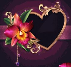 M Wallpaper, Phone Screen Wallpaper, Heart Wallpaper, Flower Wallpaper, Rose Pictures, Pretty Pictures, Art Pictures, Flower Frame, Flower Art