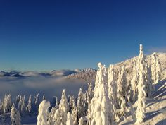 Mt. Seymour. Vancouver, BC