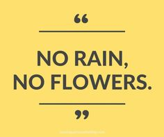 """No rain, no flowers."" - Monday Mantra on Coming Up Roses"