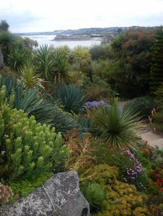 Jardin exotique Roscoff Finistère <3