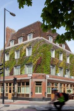 Patrick Blanc's Vertical GardenLocated a stone's throw away from Kings Cross, The Driver gastropub boasts what it calls the first vertical garden in the U.K. Botanic designer Patrick Blanc created the living wall using more than 200 plant species, offering a beautiful spot of greenery in the middle of town. Patrick Blanc's Vertical Garden at The Driver, 2-4 Wharfdale Road, N1 9RY; 020 7278 8827
