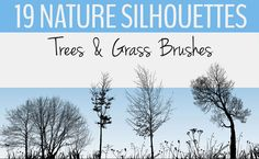 Leaves are falling, there is even some snow in many parts of the globe. Yes, winter is coming. Time to build up your design resources with some Photoshop brushes of nature, just what you need to fo…