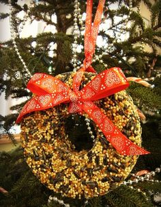 Bird Seed Wreath Tutorial - big or small they make great gifts!