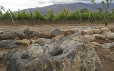 Piattelli and the Mortero Stone