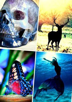 A.O. Esther : Összetört glóriák – A Mennyország Kulcsa ~ Le Monde des Livres Esther, Novels, About Me Blog, Fish, Pets, Animals, World Of Books, Animales, Animaux