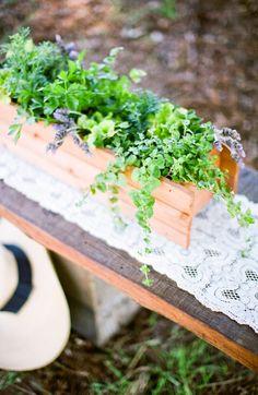 Louisville Wedding Blog - The Local Louisville KY wedding resource: Herb Table Centerpiece