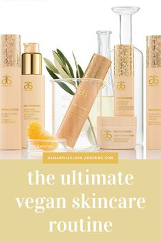 THE ULTIMATE VEGAN SKINCARE ROUTINE After a lifetime of trying to find the right skincare for me, it was only thanks to my girlfriend Cass telling me about the Arbonne business that I came to know and ultimately love the Arbonne RE9 Advanced skincare system.