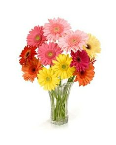 www.rosefarm.com Please email us with any questions or comments at sales@rosefarm.com #flower #delivery #onlineflowers #flowerdelivery #love #flowers #bouquets