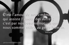 Paris - Voltaire-l-amour-de-nous-memes-assiste-l-amour-des-autres