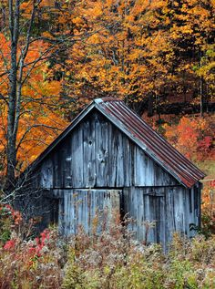 Old barn in the autumn