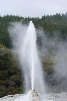 Geyser erupting!