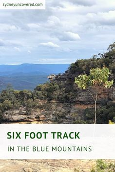 Jenolan Caves, Australian Holidays, State Forest, Suspension Bridge, Day Hike, Blue Mountain, Great View, Far Away, Campsite