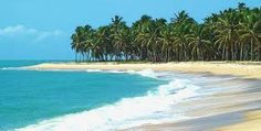 Gunga Beach - Maceió