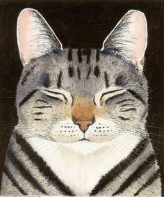 kay mc donagh, cat nap