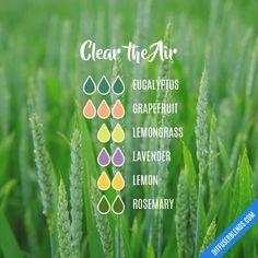 Clear the Air - Essential Oil Diffuser Blend