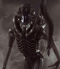 Adult Alien