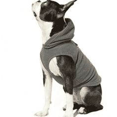 Dog Sweaters, Gooby Every Day Fleece Cold Weather Dog Vest with Hoodie for Small Dogs Cold Weather Dogs, Look Good Feel Good, Dog Vest, Dog Sweaters, Small Dogs, Best Dogs, Boston Terrier, Hoodies, Top