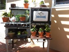Old stove my mom uses as a garden display. adorable.