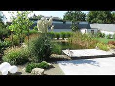Pampafű, modern kert ötletek Modern, Facebook, Outdoor Decor, Home Decor, Trendy Tree, Decoration Home, Room Decor, Home Interior Design, Home Decoration