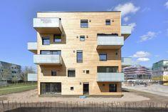 WOODCUBE \ IBA Hamburg Building Exhibition, Germany - Institut für urbanen Holzbau