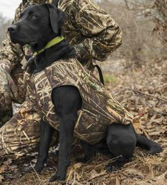 Just found this Dog Hunting Vest - Neoprene Dog Vest With Handle -- Orvis on Orvis.com!