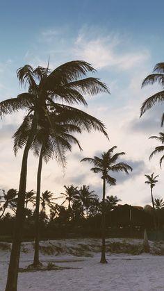Beach Park (criado por @viihrocha)