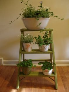 Old ladder turned plant stand. Small Step Ladders, Small Ladder, Old Ladder, Vintage Ladder, Diy Vintage, Vintage Modern, Vintage Ideas, Ladder Shelf Decor, Wooden Ladder Decor