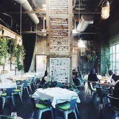 We're loving the light in this shot of the Garden Cafe in Westport, caught by Instagram aspoonfulofbenjamin.