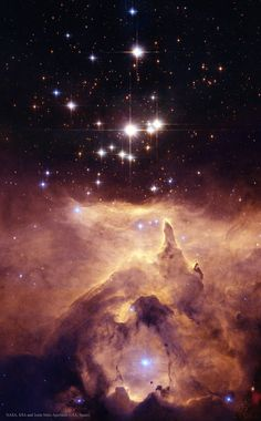 Cathedral to Massive Stars | Estimates made from distance, brightness and standard solar models had given one star in the open cluster #Pismis24 over 200 times the mass of our Sun, making it one of the most massive stars known. This star is the brightest object located just above the gas front in the featured image. Pismis 24-1 derives its brilliant luminosity not from a single star but from three at least. Component stars would still remain near 100 solar masses...