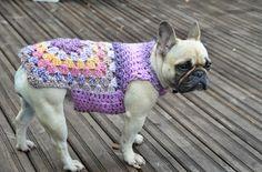 A Stash Addict Blog: Granny Square dog Jumper