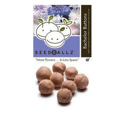 Seedballz Bachelors Button - 8 Pack - Domestic Good