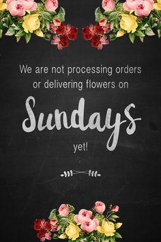 #summerflowers #StemsandDaisies #Happythings