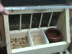 Shadybug Breeding Loft - YouTube