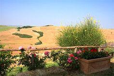 Tuscan farmhouse Pienza,Farmhouse in Val d`Orcia close to Pienza, last minute