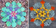 danmalas mandalas de fleurs de kathy klein 8   Les mandalas de fleurs de Kathy Klein   Sculpture plante photo mandala Kathy Klein image frui...