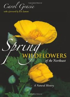 Spring Wildflowers of the Northeast: A Natural History by Carol Gracie http://www.amazon.com/dp/0691144664/ref=cm_sw_r_pi_dp_SPGDwb1NKHD9X