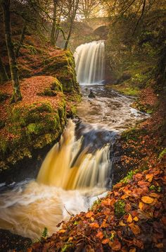 Red Carpet River is a photograph by Gareth Burge Photography. The two upper falls of Dalcairney are framed by the red autumnal leaves of the forest. Source fineartamerica.com