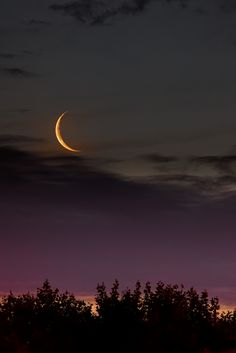 A young 2 days old moon seen after sunset. If the moon looks inverted it's because the shot was taken in the South Hemisphere.