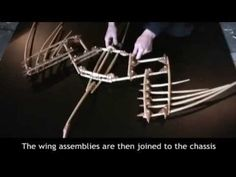 Cedar Wings, Second Version, with Construction footage - YouTube