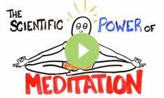 Why meditate